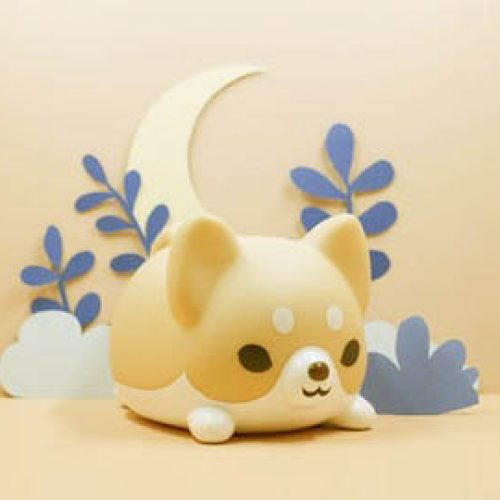 fluffy Shiba